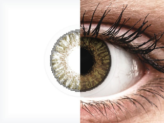 FreshLook ColorBlends Pure Hazel - dioptria nélkül (2 db lencse)
