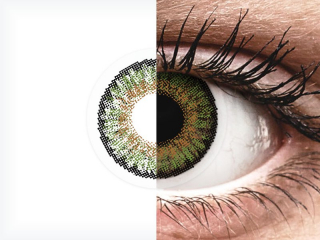FreshLook One Day Color Green - dioptriával (10 db lencse)