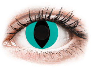 CRAZY LENS - Cat Eye Aqua - dioptria nélkül napi lencsék (2 db lencse)