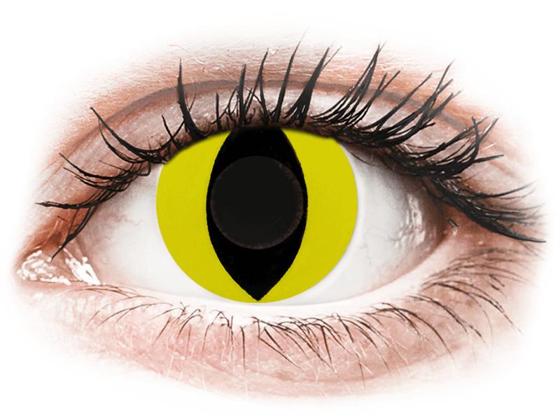 CRAZY LENS - Cat Eye Yellow - dioptria nélkül napi lencsék (2 db lencse) - Coloured contact lenses