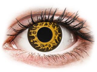 CRAZY LENS - Cheetah - dioptria nélkül napi lencsék (2 db lencse) - Coloured contact lenses